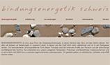 Zenart Website bindungsenergetik.zenart.ch