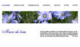 Zenart Website www.manidiluce.ch